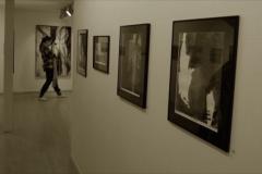Utstillinger (25)